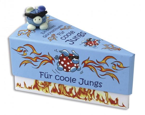 Geschenkschachtel Tortenstück - Glücksschwein für coole Jungs 8706