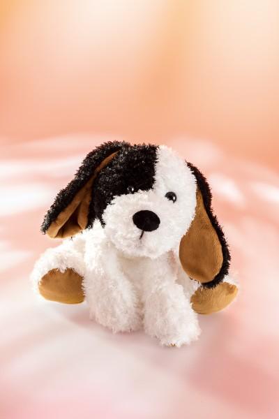 Schaffer 5422 Plüsch Hund Flecki ca 21cm